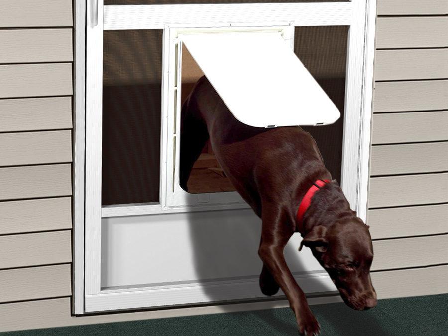dog door for screen door