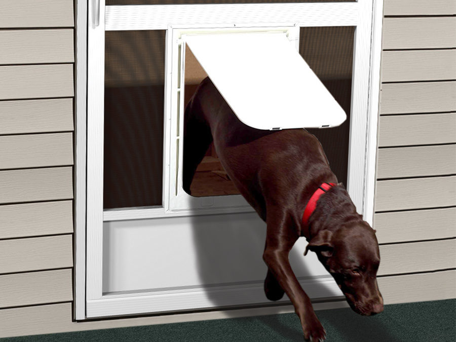 Pet Doors Screen Door With Pet Door Dog Screen Doors Pca Products
