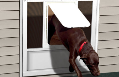 Pet Door Upgrade